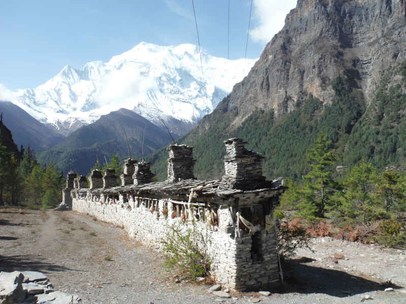 Small scale rewilding in the Annapurna range in Nepal