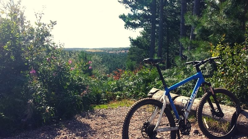monkey trail red route cannock chase mtb centre header